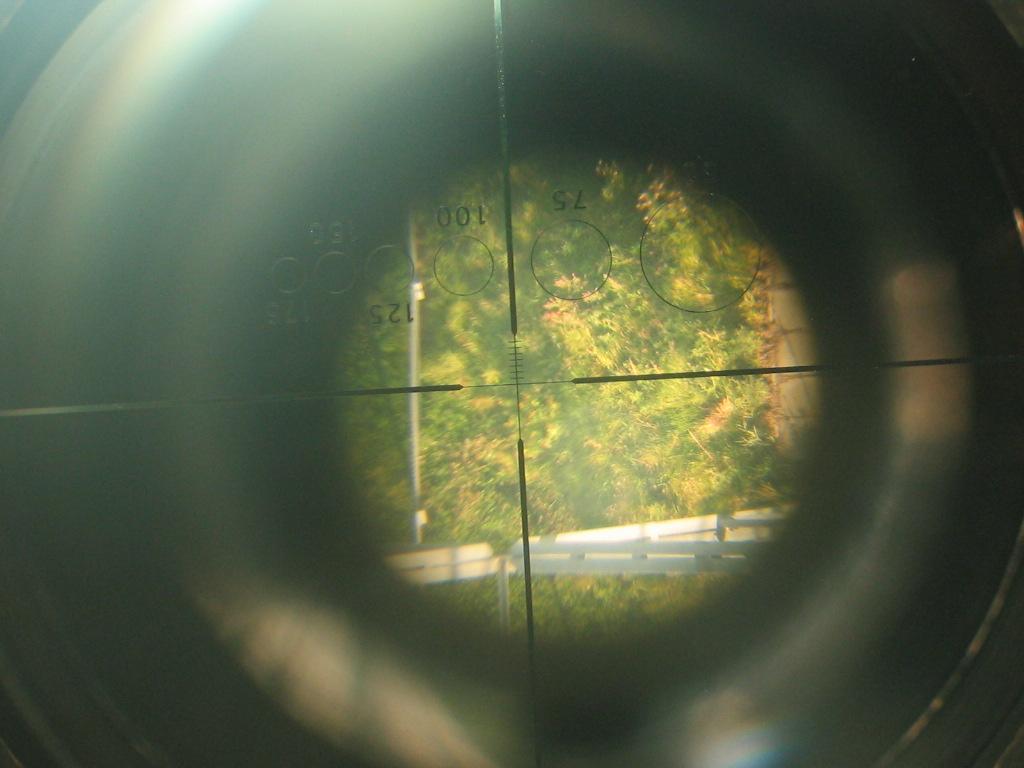 Blick durch das Fernglas